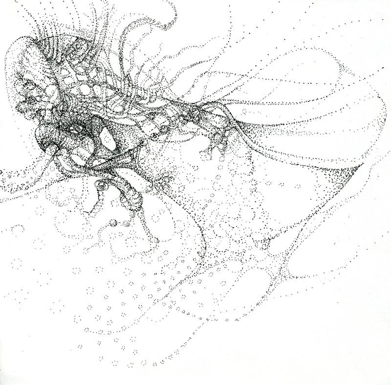 octopus21x21cm