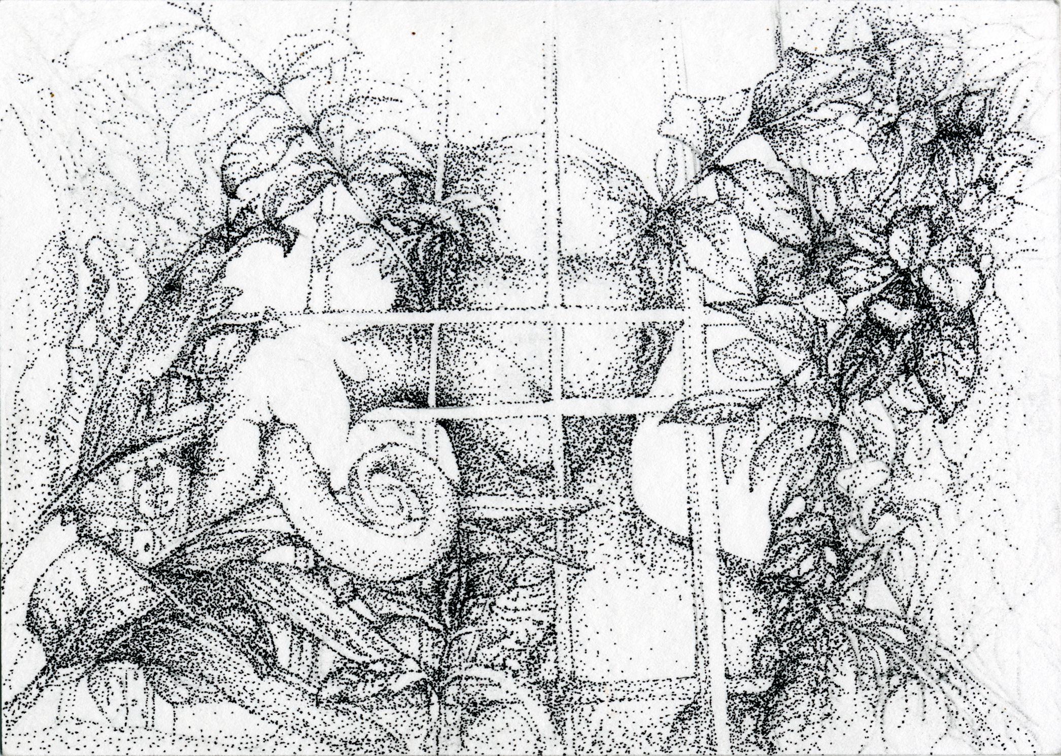 Caprice numéro 2, dessin à l'encre sur papier, 15x10cm, 2016.