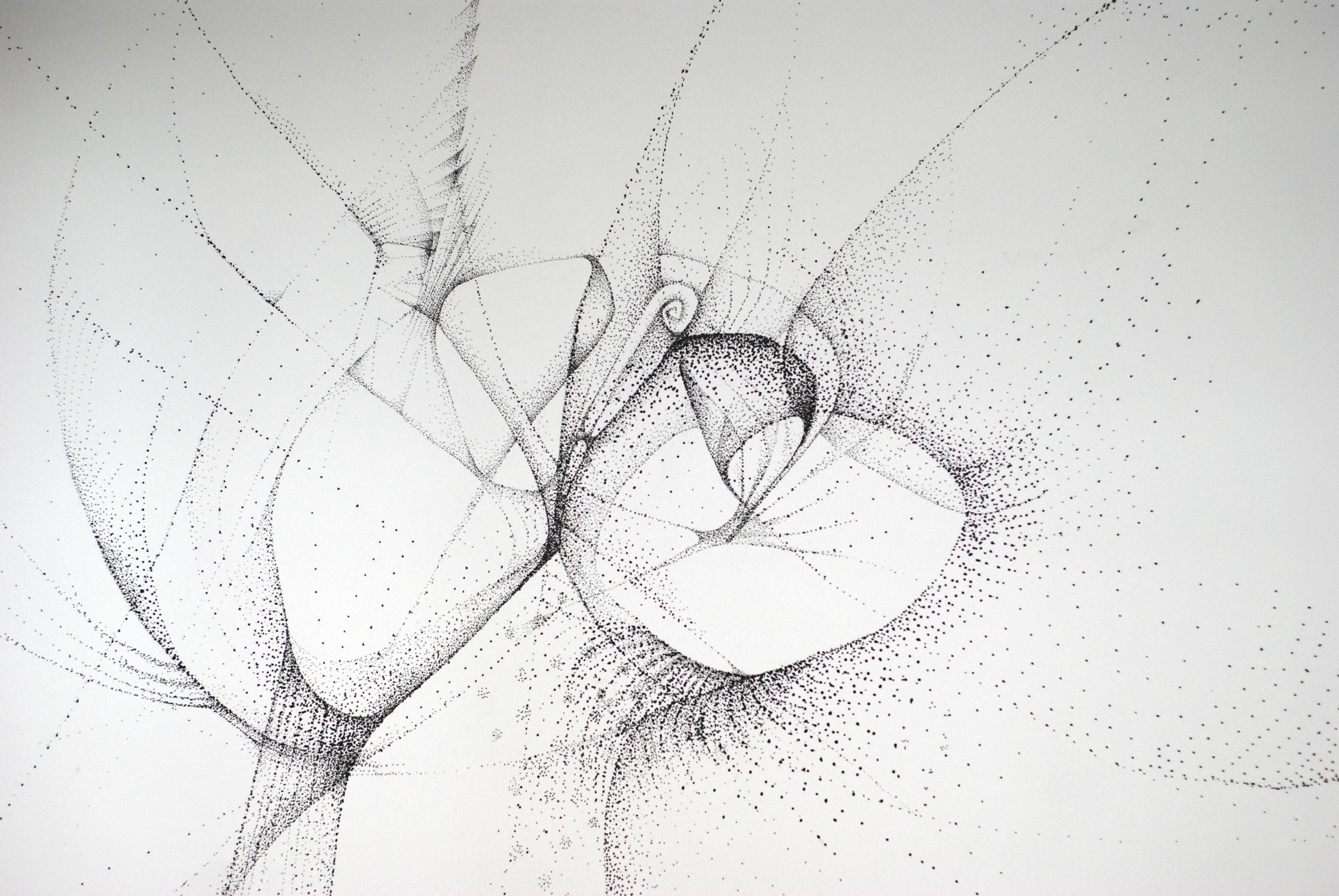 wall drawing22